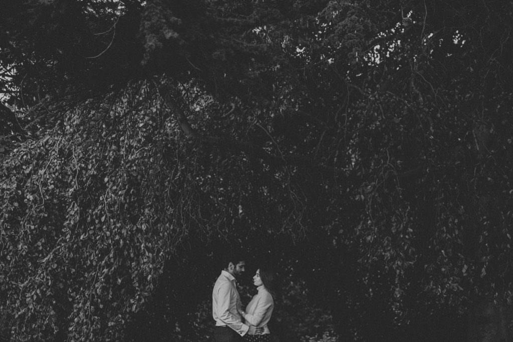 Black and white image of a couple in the park - big tree - South Kensington couple shoot
